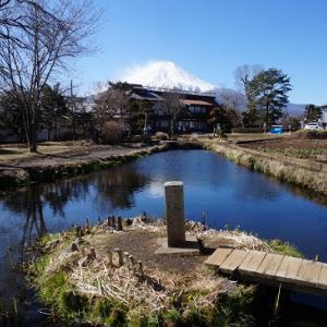 忍野八海【菖蒲池~濁池】