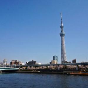 隅田川の桜【台東区編】