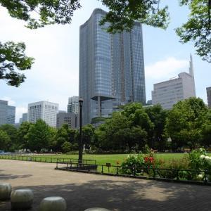 日比谷公園de紫陽花と高層ビル