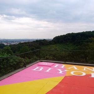 空見の丘からの眺め