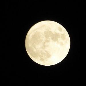 眩しいくらいの中秋の名月