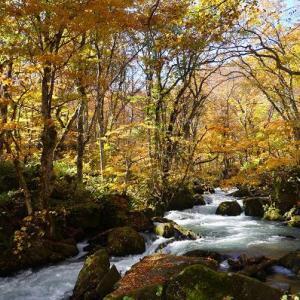 恋しい秋の山ガール旅【奥入瀬渓流】