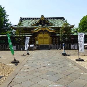 上野東照宮と不忍池の黄菖蒲