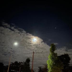 林檎電話で月を撮る