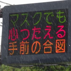 五代目だそうです 熊本県警のデビュー作