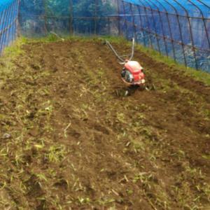 ジャガイモの連作障害を避けたい。