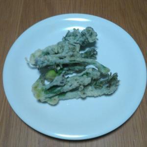 タラの芽とタケノコを食べました。