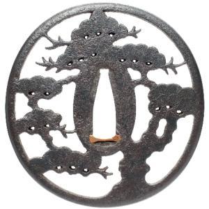 松樹図鐔 赤坂忠時 Akasaka Tsuba