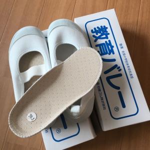 購入品到着!足に快適な上履き♢教育バレーシューズ2足セット