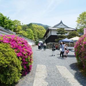 ゴールデンウイークの京都の旅4