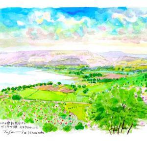 ガリラヤ湖を見下ろす イスラエル
