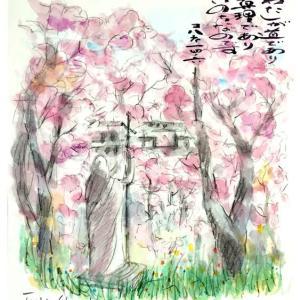 桜の満開のとき スケッチで