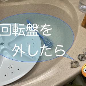洗濯機が壊れ、10年ぶりに買い替え。シンプル重視でTOSHIBAに♪