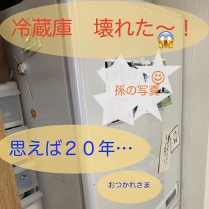今度は冷蔵庫が壊れました!待ったなしの家電、在庫ありで翌日配達!