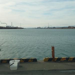超、久しぶりのブログ更新!苫小牧港勇払埠頭
