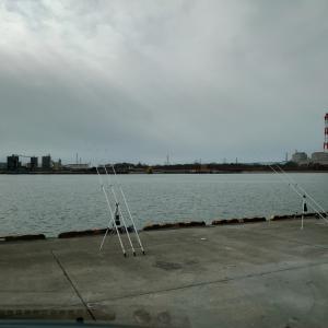 苫小牧西港 クロガシラ狙いPart2