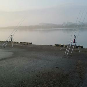 2019.6.8 苫小牧西港クロ