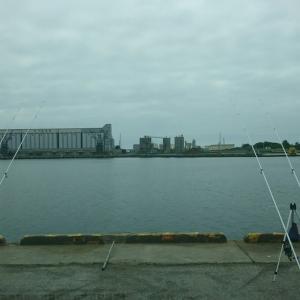 7日苫小牧西港へ・・・