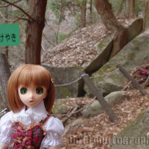 木賊の石割けやき(竜門峡)