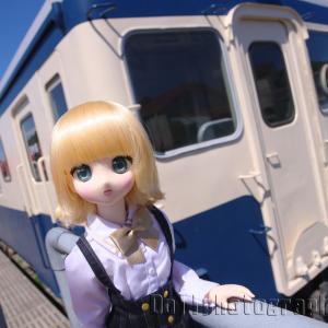 ひたちなか開運鐵道神社「キハ222」の半生