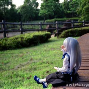 野川公園、武蔵野の森公園 with YASHICA Flasher