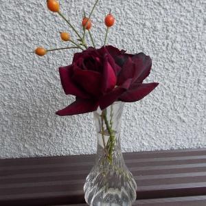 花瓶に生けたオクラホマが良い香りです。