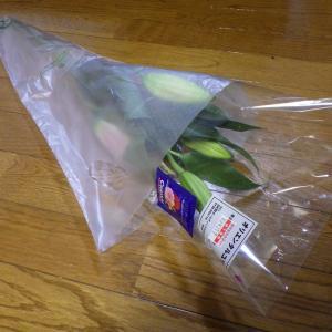 HCで切り花とランタンを購入しました。