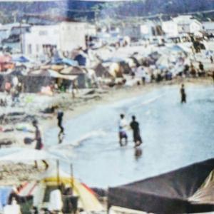 🐻🌊小樽市内の海水浴客が1割増加!26万人❕❕