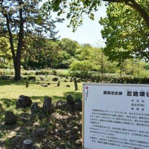 🐻世界遺産登録勧告小樽・余市に期待❕&水田に羊蹄山が「逆さ羊蹄」が見頃❕