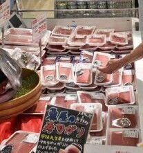 🐻小樽水産高生徒が漁業実習のマグロが小樽市内のコープさっぽろ2店舗で発売❕&ニセコアンヌプリで夏季のゴンドラ営業開始❕