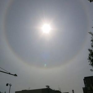 🐻小樽市の上空に現れた光の輪現象日暈❕&小樽天狗山散策路の木にQRコード付きの樹名板を設置❕