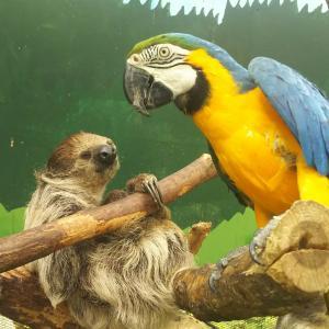 『自己責任』がテーマ?ほぼ何でも触れられる動物園、『ノースサファリサッポロ』はスリルあって最高に面白かったです。下手物フードも忘れず食べようね?