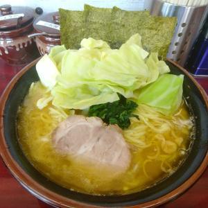 「甲子家」で珍しい酒井製麺の細麺に変更、ラーメン大盛キャベツ増しを食べてみる。スープの旨味をさらに感じることができて良かった。ここの味だからこそ合うのかな?