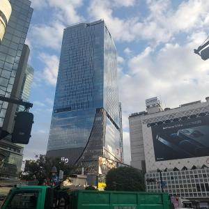 新宿~渋谷間はちょっとしたお散歩にちょうどいいコースだと思うのでオススメしておく。道も単純、寄り道スポットも十分!