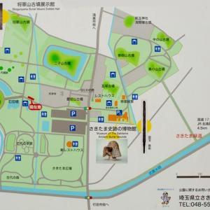 行って来ました! 行田市のさきたま古墳群、古代蓮の公園そして、高澤家記念館へ