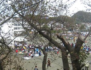 ■童心にかえる 葉山一色小運動会