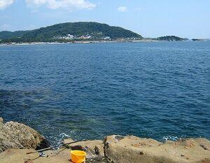 ■2020初のヨツバ入り ダンメジ爆釣/新型コロナ 東京は感染爆発の予兆か