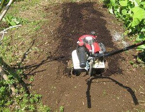 ■畑仕事;早めの里芋植え/新型コロナ 首都圏風雲急を告げる