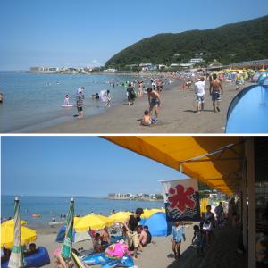■三浦海岸も中止 対応迫られる御三家/2020年神奈川の海水浴場