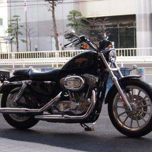 祝納車 2008 XL883L