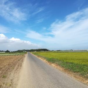 【写真有り】やっぱり実家の田舎は最高だなと思った話【原付ツーリング】