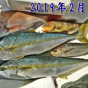 2019年の釣果( field in 日本海 )