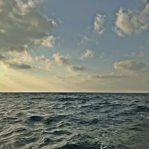 初釣りに行ってきました~🎣 【  少し荒天でしたが・・😜 】