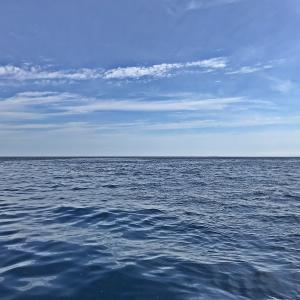 日本海で「釣りざんまい」の休日を楽しんできました~💪 【 DAY 1:初日はエサ釣りで多目フィッシング🎵 】