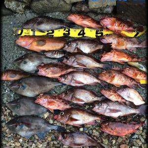 12月は何を釣りますか?【 釣魚録 / in 日本海 】 ※順次更新👍