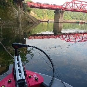 三島湖 バス釣り