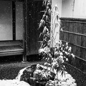 大原の雪景色!  ~三千院~