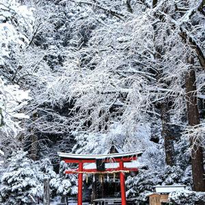 雪景色!  ~岩戸落葉神社~