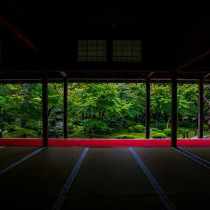 雨の圓光寺!
