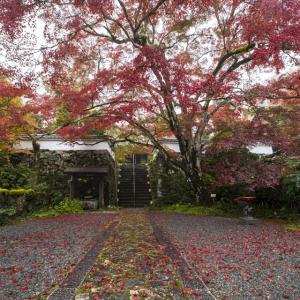 紅葉2020!  ~亀岡 神蔵寺~
